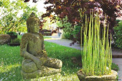 Immersion Hatha & Vinyasa – Yoga Searcher 2018